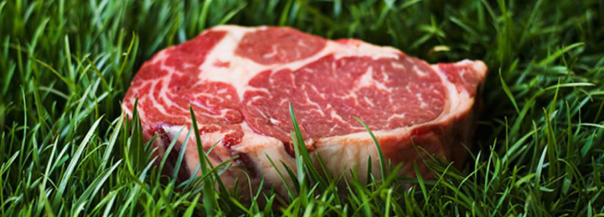 carne grass fed