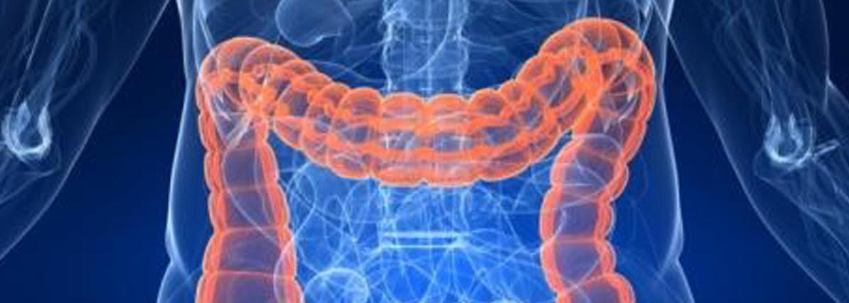 diagramma dei batteri infettivi e delle malattie da essi causate